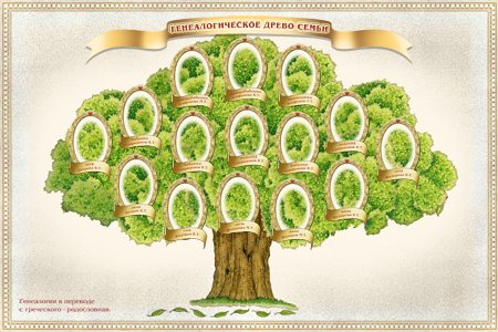 Как сделать древо жизни для детей